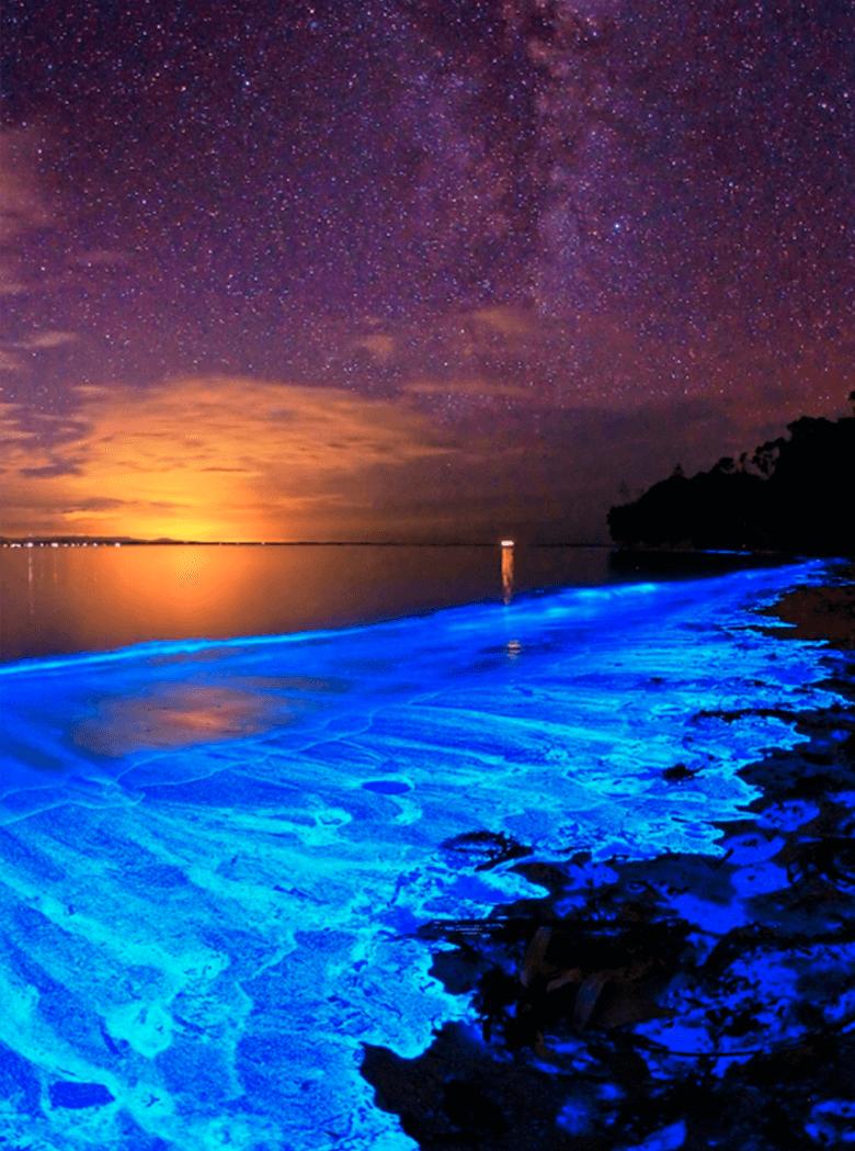 Bioluminiscencia o fosforescencia en Puerto Escondido, Oaxaca México.